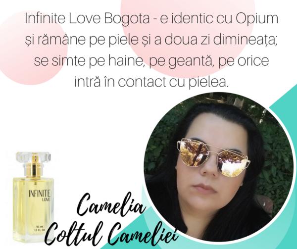 pareri infinite love blogger coltul cameliei